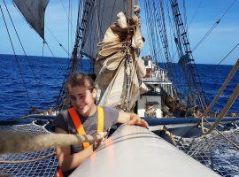 Sailmail 2: Nieuwsgierige meezwemmers en Kerst in tropische temperaturen